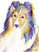 Collie Painting Framed Prints - Kelly Framed Print by Pat Saunders-White