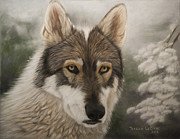 Wolves Pastels Framed Prints - Keme Framed Print by Teresa LeClerc