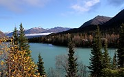 Theresa Willingham - Kenai River Vista