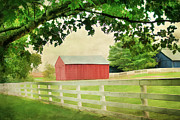 Old Country Roads Posters - Kentucky Country Side Poster by Darren Fisher