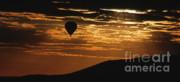 Sandra Bronstein - Kenya - Sunrise Ballooning