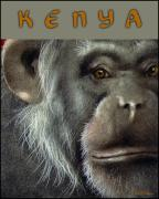 Apes Framed Prints - Kenya... Framed Print by Will Bullas