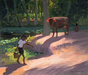 Cow Boy Paintings - Kerala Backwaters by Andrew Macara