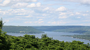 Grapes Art Prints - Keuka Lake Print by Timothy Wahl