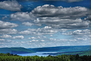 Metal Trees Posters - Keuka Landscape IV Poster by Steven Ainsworth