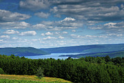 Framed Landscape Framed Prints - Keuka Landscape V Framed Print by Steven Ainsworth