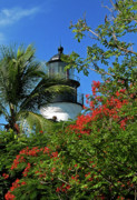 Florida Flowers Framed Prints - Key West Lighthouse Framed Print by Frank Mari