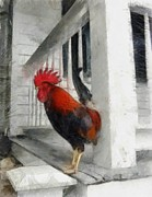 Railings Posters - Key West Porch Rooster Poster by Michelle Calkins