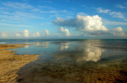 Sea Photo Originals - Keys Reflections by Mike  Dawson