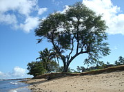 Beach Photograph Photo Originals - Kihei Beach by Kylani Arrington