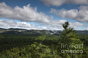 Killarney Provincial Park Framed Prints - Killarney Provincial Park Framed Print by Ted Kinsman