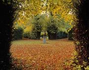 Autumn In The Country Posters - Killruddery House And Gardens, Bray, Co Poster by The Irish Image Collection