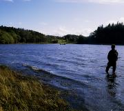 Wade Fishing Prints - Killykeen Forest Park, Co Cavan Print by The Irish Image Collection