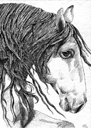 Mustang Drawings Posters - Kinda different horse Poster by Kate Black
