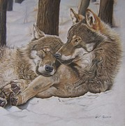 Wolves Pastels Framed Prints - Kindred Spirits Framed Print by Lucy Swinburne