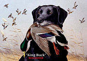 Waterfowl Painting Posters - King Buck    1959 Federal Duck Stamp Artwork Poster by Maynard Reece