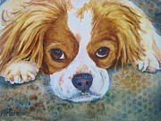 Brown White Dog Framed Prints - King Charles Spaniel Framed Print by Patricia Pushaw
