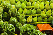 Durian Prints - King Of Fruits Print by Simonlong