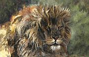 Beasts Paintings - King of the Beasts by Leisa Temple