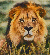 Lion Oil Paintings - King of the Jungle  by Elizabeth Coats