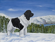 Snow Scene Painting Originals - King Of The Mountain by Sharon Nummer