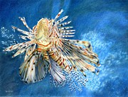 Tropical Fish Drawings Posters - King of the Reef Poster by Bev Lewis
