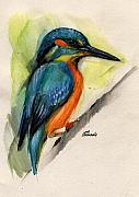 Kingfisher Drawings Framed Prints - Kingfisher Framed Print by Angel  Tarantella