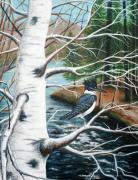 Birch River Prints - Kingfisher Print by Brenda Baker