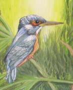 Debra Piro - Kingfisher