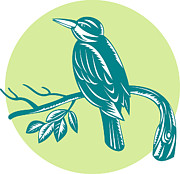 Woodcut Posters - Kingfisher Perching On Branch Woodcut Poster by Aloysius Patrimonio