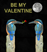 Kingfisher Mixed Media - Kingfishers BE MY VALENTINE by Eric Kempson