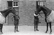 Thoroughbred Horse Art - Kings Horses by Bert Hardy