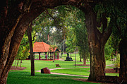 Peaceful Scene Pyrography Prints - Kings Park Perth WA Print by Imagevixen Photography