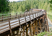 Wooden Photo Posters - Kinsol Trestle Poster by Andy Smy
