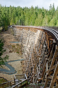 Wooden Framed Prints - KINSOL TRESTLE Trans Canada Trail Vancouver Island Framed Print by Andy Smy
