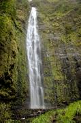 Jenna Prints - Kipahulu falls with foliage Print by Jenna Szerlag