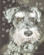 Rescue Drawings Prints - Kirby -  rescue dog Print by Jim Hubbard
