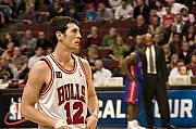 Chicago Bulls Photo Prints - Kirk Hinrich Print by Andrei Shliakhau