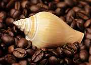 Kaffee Posters - Kitchen Pictures Coffee beans Snail Poster by Falko Follert