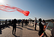 - Occupy Beijing Prints - Kite Aloft Print by Mike Reid