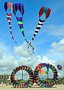 Kite Festival At Lincoln City Oregon Print by Margaret Hood