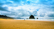 Sandy Beaches Posters - Kite Flyer at Cannon Beach Poster by David Patterson