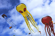Kites Metal Prints - Kites At Long Beach Metal Print by Bob Christopher