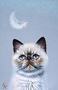 Exotic Drawings Posters - Kitten and feather  Poster by Elena Kolotusha
