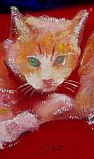 Cushion Love Originals - Kitten by Charles Stuart