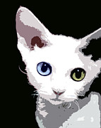 Kittens Digital Art Posters - Kitten Poster by Glennis Siverson