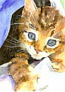 Pet Art Painting Framed Prints - Kitten In Blue Framed Print by Christy  Freeman