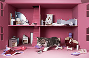 Furious Prints - Kitten In Wrecked Dolls House Print by Martin Poole