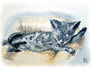 Cat Art Prints - Kitten Print by Irina Sztukowski