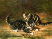 Tabby Paintings - Kittens   by Horatio Henry Couldery